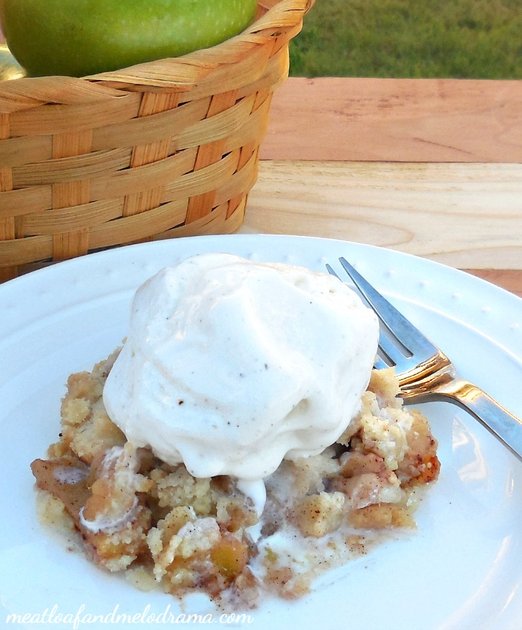 Cinnamon apple crisp meatloaf and melodrama for Easy apple dessert recipes with few ingredients