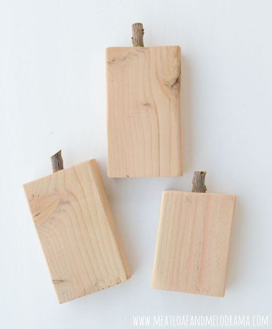 wood twig stems on 2x4 wood blocks