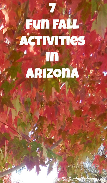 fall leaves in Arizona
