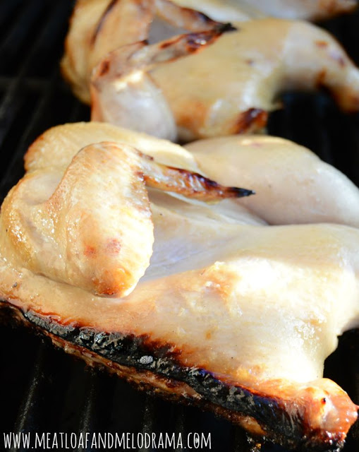 cornish-hens-on-the-grill