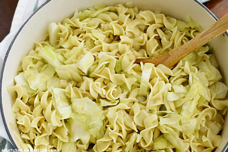 cabbage and egg noodles in dutch oven