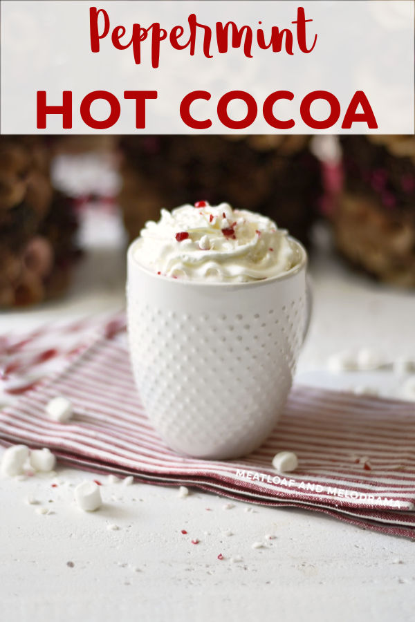 Peppermint Hot Cocoa recipe with cocoa powder and milk