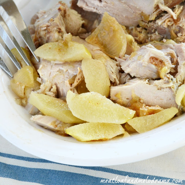 pork-with-onions-applesauce-in-slow-cooker