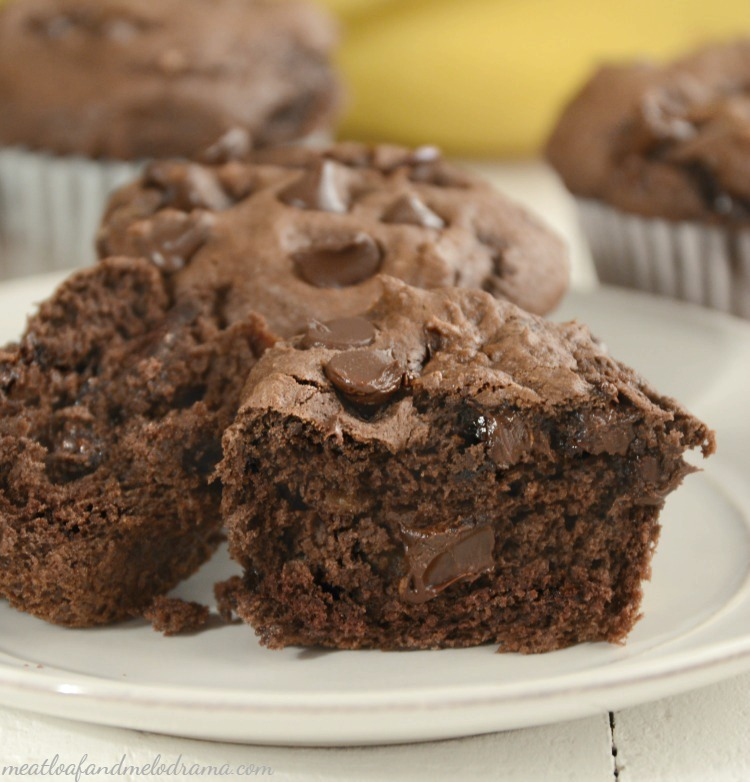 2-ingredient-easy-chocolate-banana-muffins