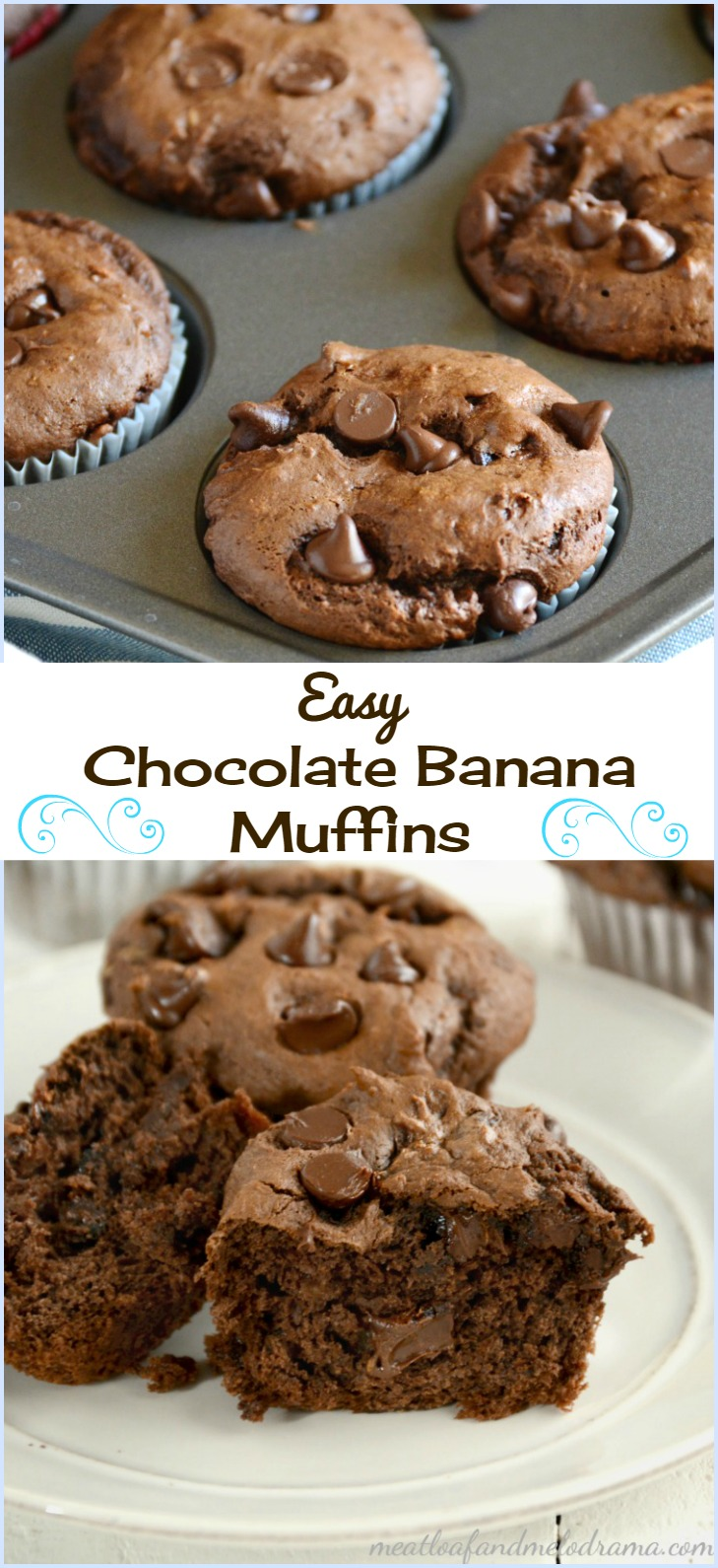 Easy Chocolate Banana Muffins - Meatloaf and Melodrama