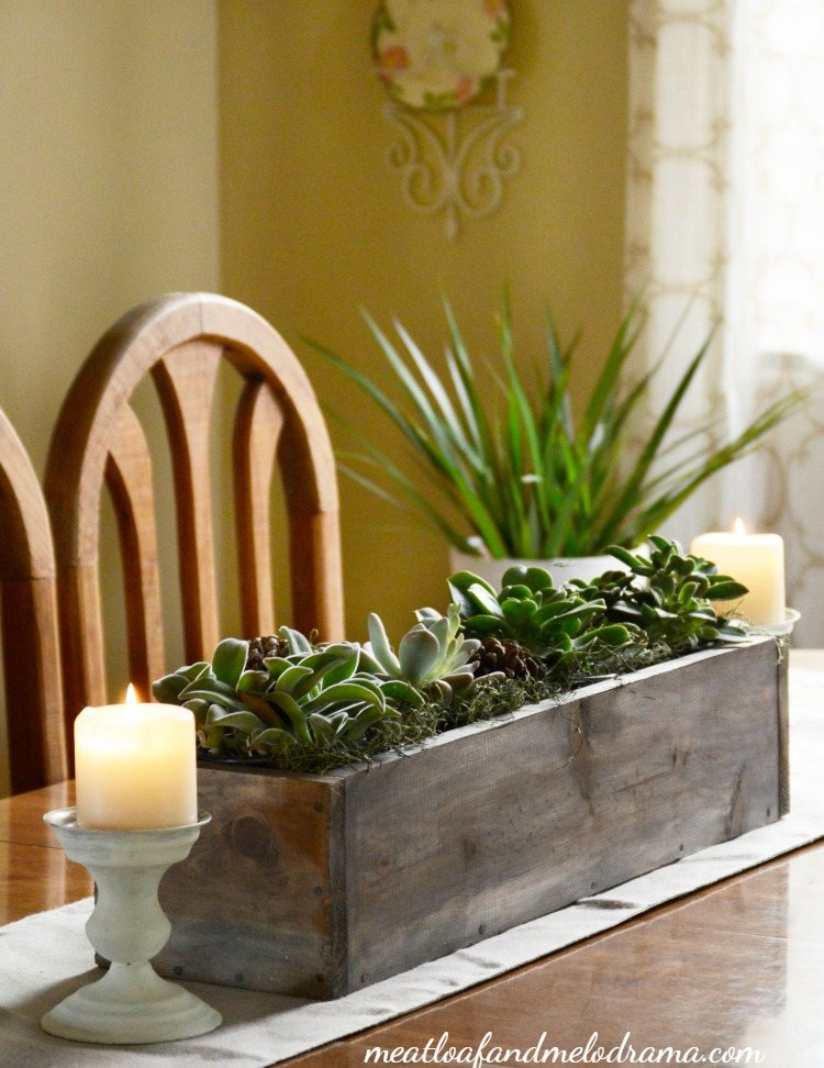 easy-succulent-centerpiece