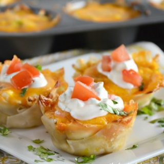 Pollo Fundido Cups