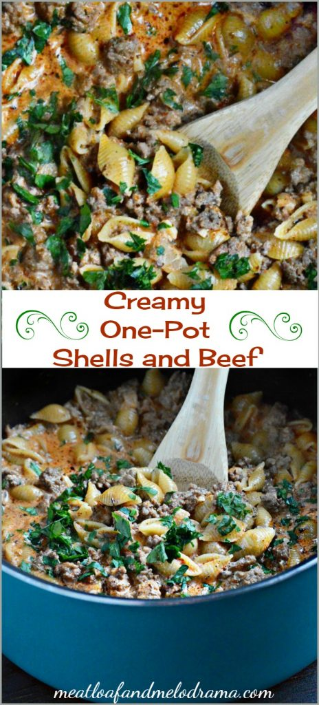 creamy one pot shells and beef recipe