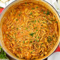 shell pasta and ground beef with creamy tomato sauce in red dutch oven