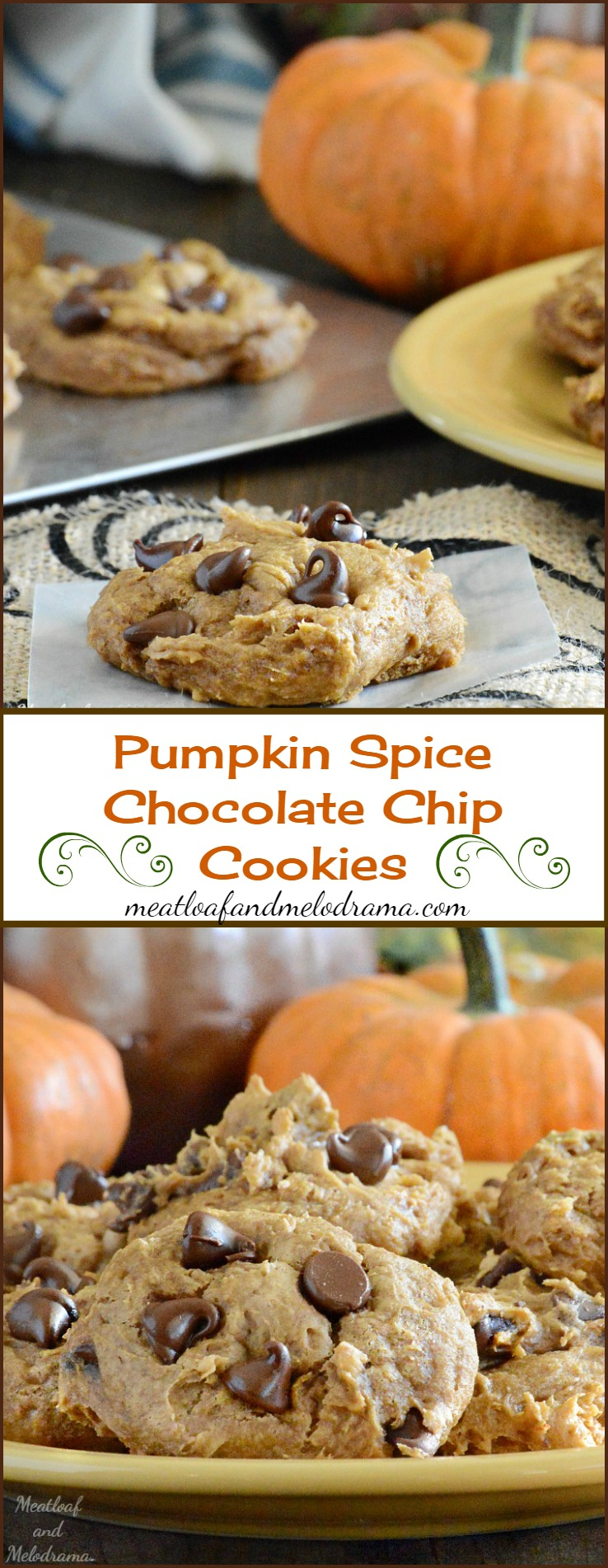 Pumpkin Spice Chocolate Chip Cookies Recipe