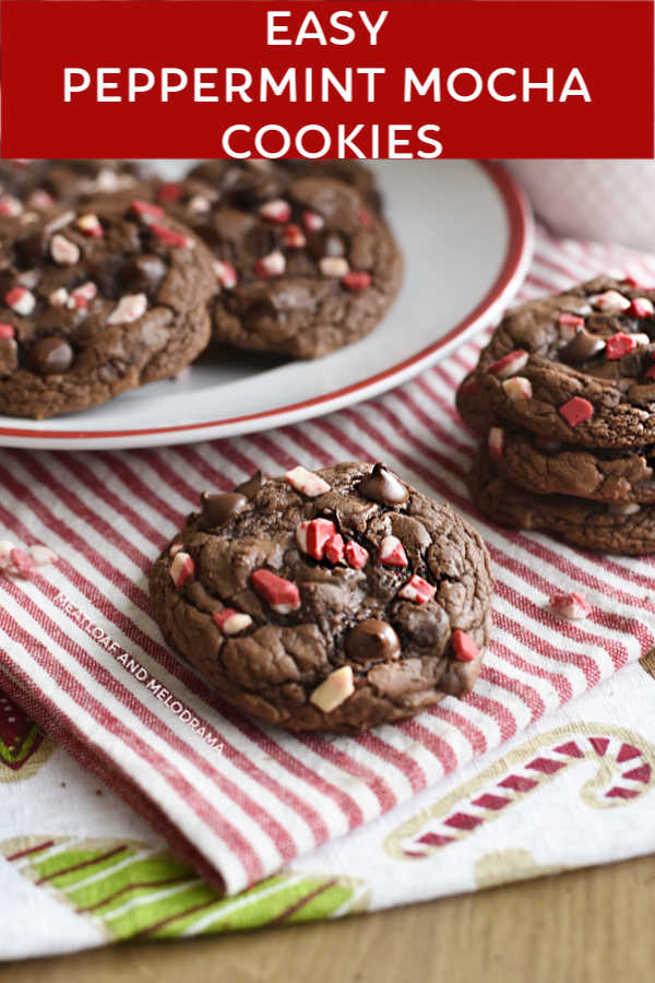 easy-peppermint-mocha-cookies-international-delight-cake-mix-meatloafandmelodrama-com