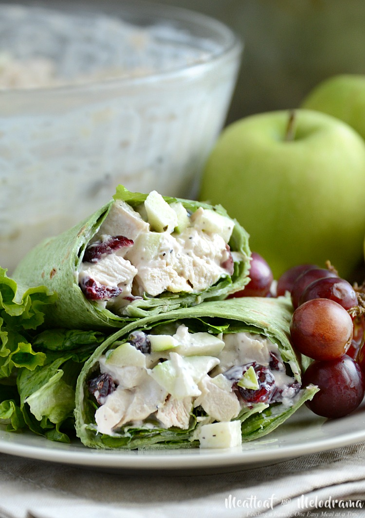 Cranberry Apple Chicken Salad Wraps - Meatloaf and Melodrama