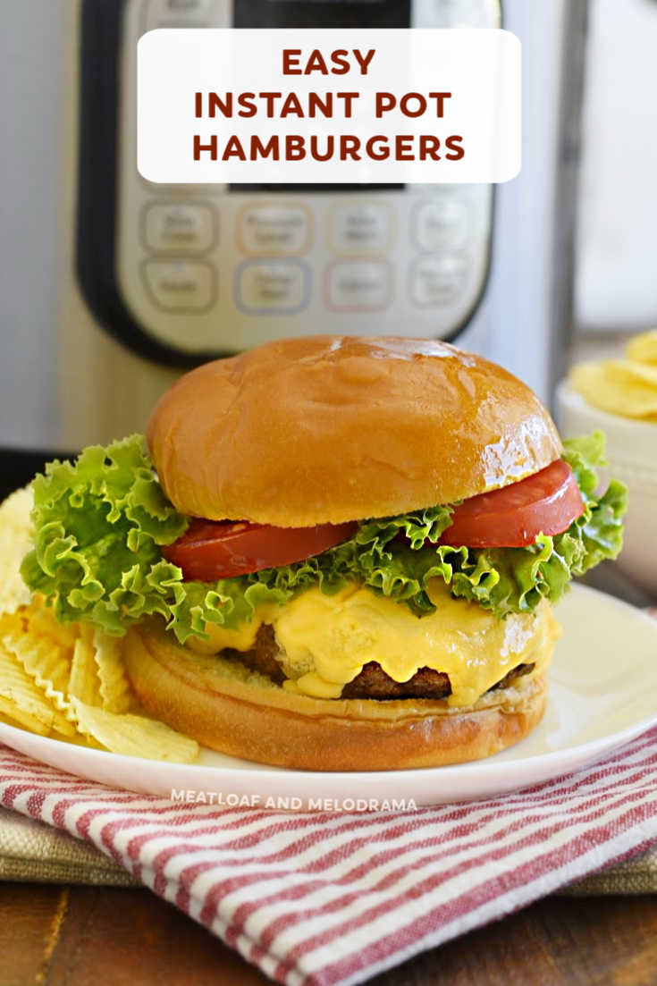 Make Easy Instant Pot Hamburgers for a quick dinner in your electric pressure cooker using ground beef and a few other ingredients. This easy recipe is perfect when you can't grill or fry hamburger patties, and even picky eaters approve!