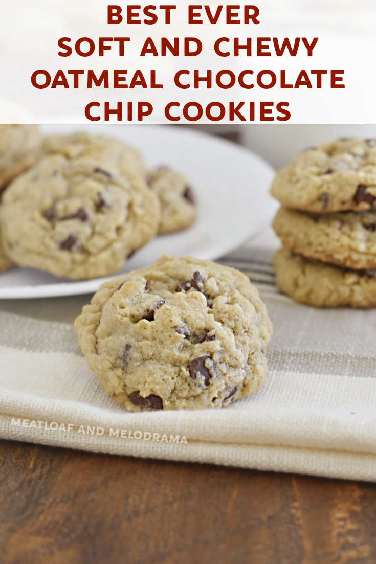 The Best Oatmeal Chocolate Chip Cookies are soft, chewy and made with rolled oats, semi sweet chocolate, a hint of cinnamon and lots of love!