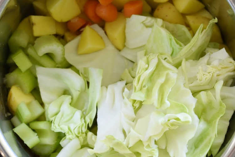 cabbage, celery, potatoes and carrots in instant pot