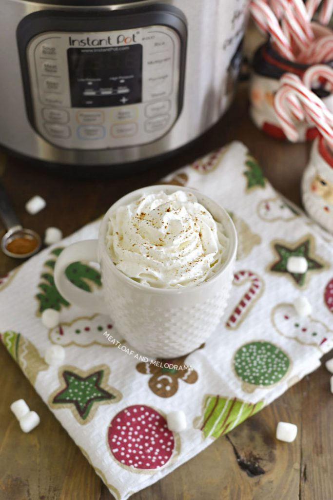 homemade hot cocoa in a white mug with whipped cream