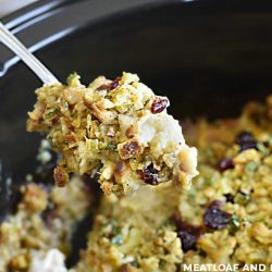 chicken and stuffing with cranberries on a spoon over crock pot